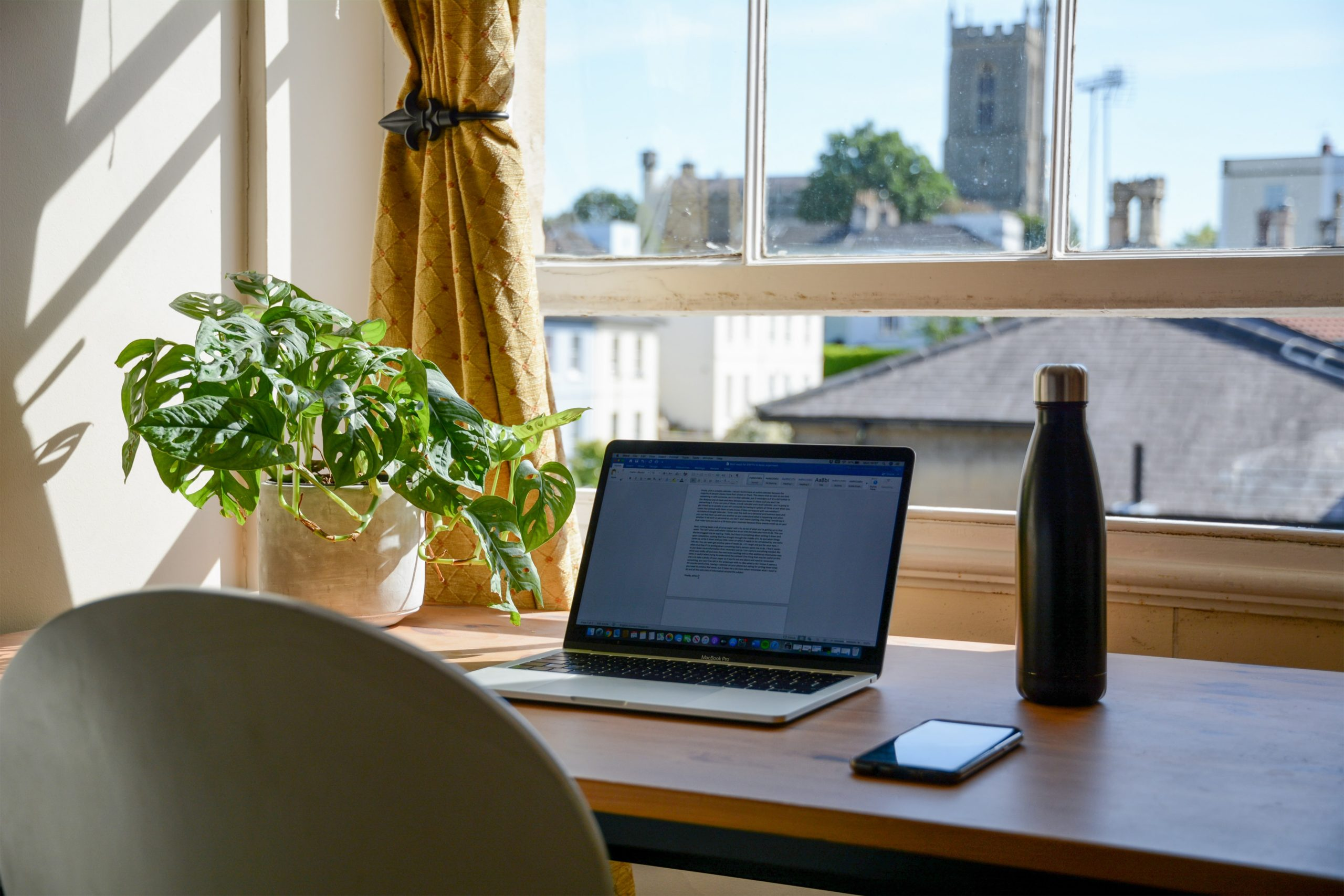 Desk setup with a plant, laptop, and a water bottle